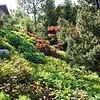 Willkommen bei Zingreen Gartenbau GmbH