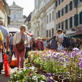 Samstagsmarkt Solothurn