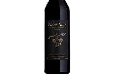 PINOT NOIR - Ollon
