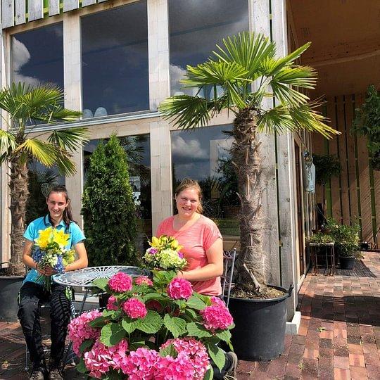 Blumen Joos GmbH