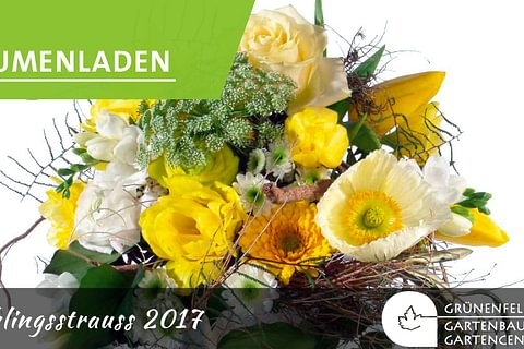 Blumen - passend für jeden Anlass