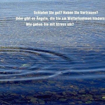 Integrative Kinesiologie Regula Klee-Hauser
