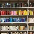 die Bibliotheke, farbig, froh und überschaubar