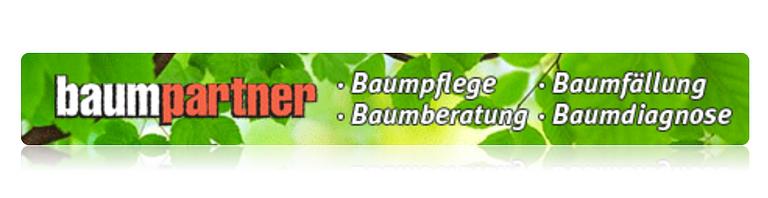 baumpartner bridge & grobéty