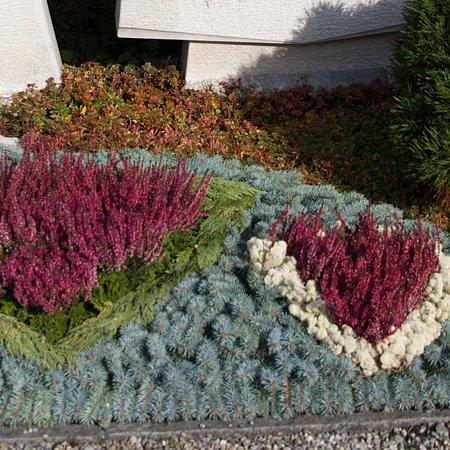 Blumen Müller AG