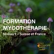 Formations en Mycothérapie