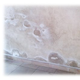 Remontées capillaires dans un mur de couloir