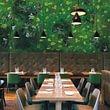 Verde stabilizzato Green wall Giardini Fioriti Giardiniere diplomato Lugano