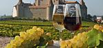 Apéro-Vigne