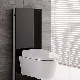 WC geberit monolit