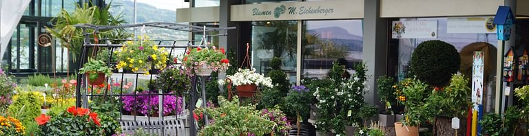 Blumen Eichenberger