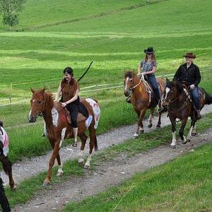 Activités équestres au CFPS Les Peupliers à Oberried
