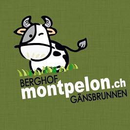 Berghof Montpelon Gänsbrunnen