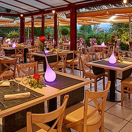 "Restaurant La terrasse ""Jardin d'hiver"""