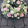 Blumen Weber