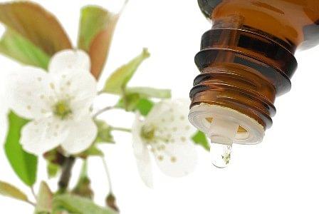 Persönliche Bachblüten Mischung (22 CHF) inkl. Versand
