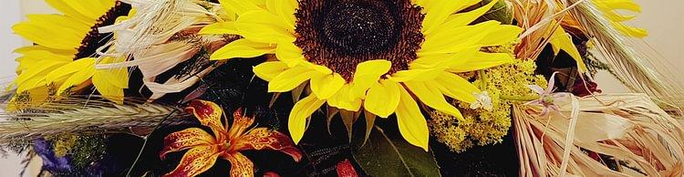 Blumen Nouvelle Fleur