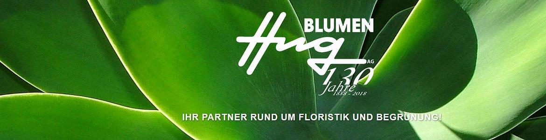 Blumen Hug AG