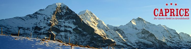 crazy price best 100% authentic Caprice a Grindelwald - Indirizzi e orari d'apertura su local.ch
