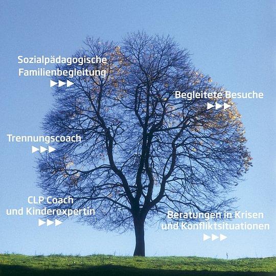Karin Knecht GmbH