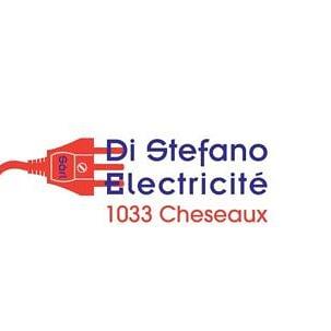 Di Stefano Electricité