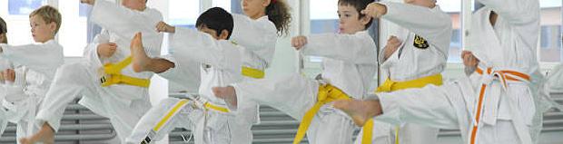 Karate Akademie Zürich