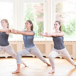 fayo - das Faszien Yoga von Liebscher & Bracht