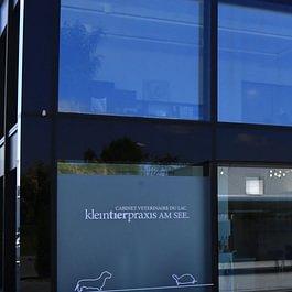 Kleintierpraxis am See Murten GmbH