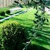 Giardini ArteVerde Sagl