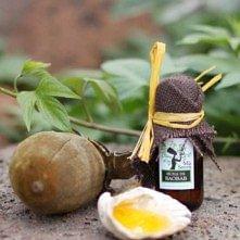 Jojoba Gold Suisse - l'huile de Baobab BIO