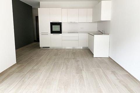 BELLINZONA - affittasi rinnovato appartamento