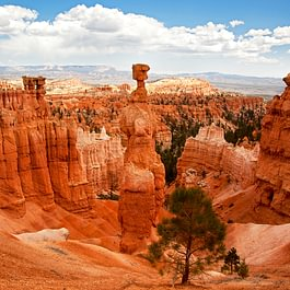 Bryce Canyon in den USA