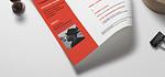 5 template di CV per lavorare in Ticino, Svizzera