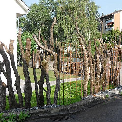 Balsiger Gartengestaltung GmbH, Neuanlagen Sichtschutz