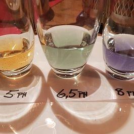Ph Wert des Wasser testen