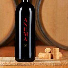 Anima rossa. Omaggio all'Anima della Chiericati vini, Angelo Cavalli. Assemblaggio in stile bordeaux