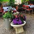 Unser Garten im Klingenhof