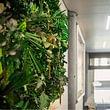 Quadro di verde stabilizzato Green wall Giardini Fioriti Giardiniere diplomato Lugano
