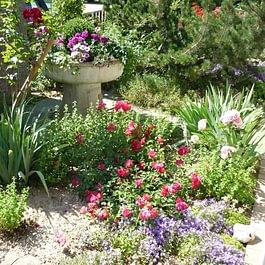 Blumen Brunner
