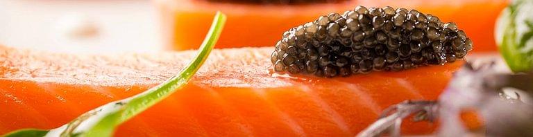 Planet Caviar SA