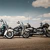 F. & W. Arni AG Harley-Davidson