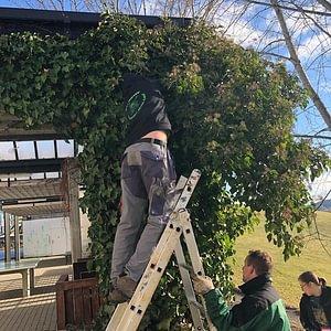 Horticulteurs en action au CFPS Les Peupliers à Oberried