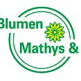 Blumen Mathys & Co