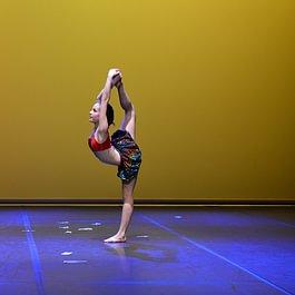 Studio Flay Ballet