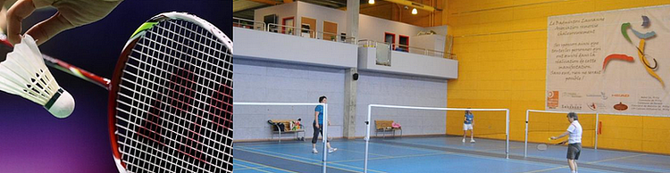 Badminton Lausanne Association