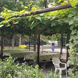 Ristorante Grotto Greina