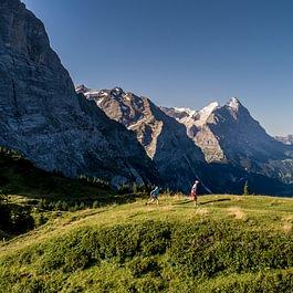 Das Backdoor Grindelwald Trail Running Team trainiert auf der Grossen Scheidegg
