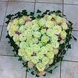 Blumengeschäft Efeulaube