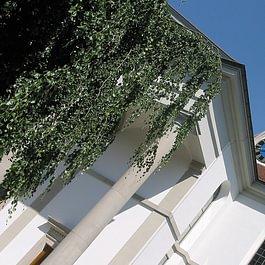Denkmalgeschützte Fassadenrenovation Kirche Uster