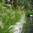 Wasser im Garten belebt und beruhigt zugleich..